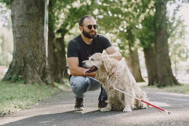 盲導犬が市内の盲人を助ける。ハンサムな盲目の男は、街でゴールデン・リトリーバーと残りを持っています。