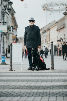 Собака-поводырь помогает слепому перейти улицу.