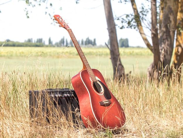 Гитара в природе