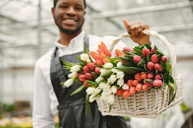 Парень-садовник с корзиной. африканец в фартуке. корзина цветных тюльпанов.