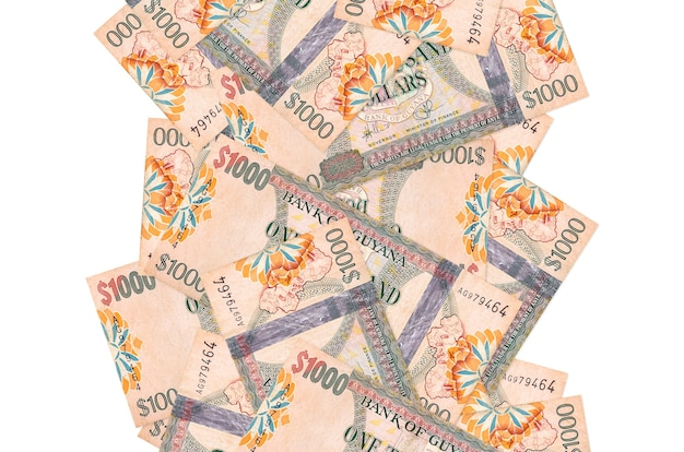 가이아나 달러 지폐 흰색 표면에 아래로 비행