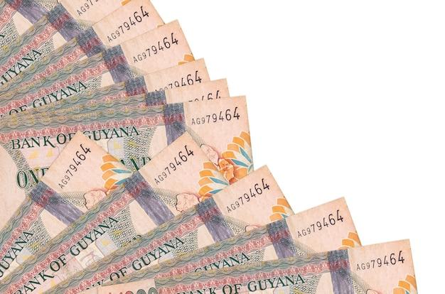 흰색 표면에 누워 가이아나 달러 지폐