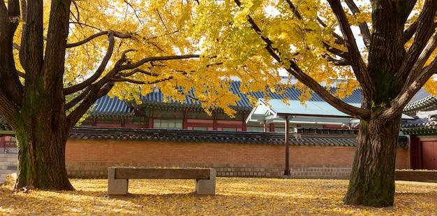 가을 서울의 경복궁 한국