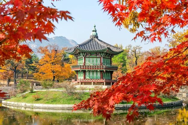 한국의 가을 경북궁과 단풍 나무.