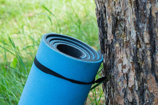 Gymnastic mats or carpet on the grass outdoors near tree. blue yoga mat
