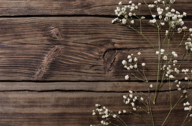 Gypsophila flowers on old wooden background