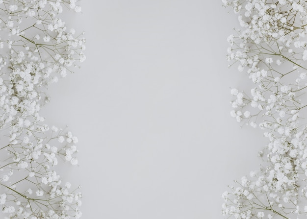 Gypsophila on gray background with copy space in the center