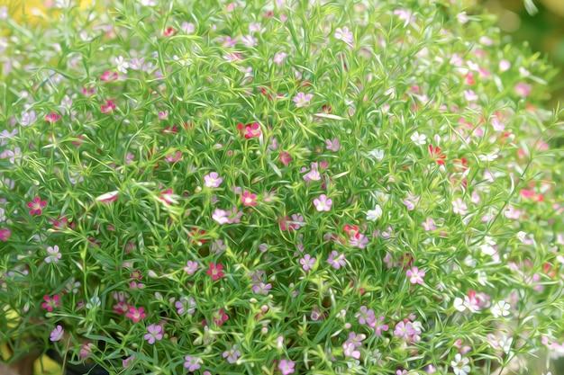 カスミソウパニキュラータピンクは、デジタル油絵風の花束の花が咲いています。