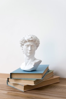Gypsum statue of david's head on a bookshelf