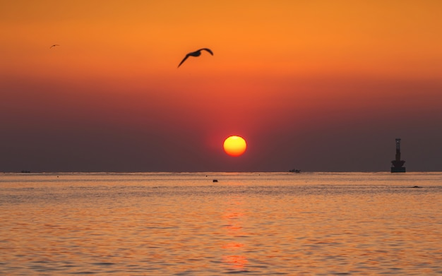 Красивый восход солнца на пляже haeundae, пусан, южная корея.