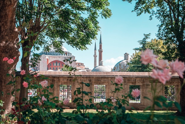 Hagia sophia mosque in the distance in istanbul.