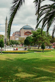 Hagia sophia mosque in its splendor in the distance. the shadow from a palm tree on the green grass.
