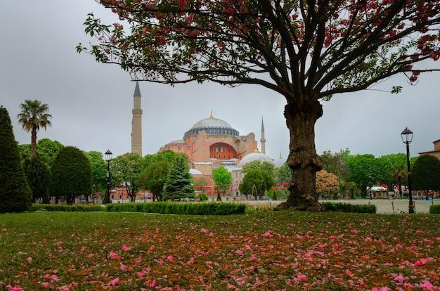 Собор святой софии в дождливый день в стамбуле