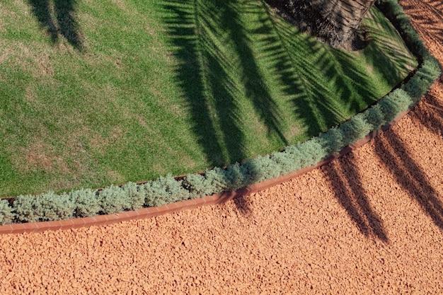 Хайфа израиль. тень больших красивых пальмовых листьев в садах бахаи. задний план. холли лэнд