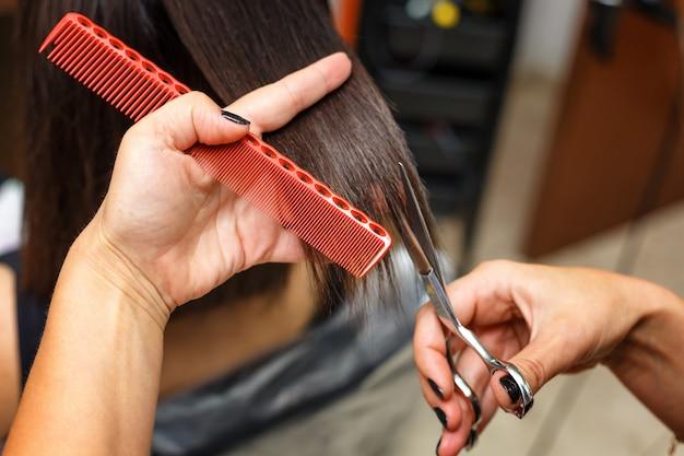 Haircut in the beauty salon