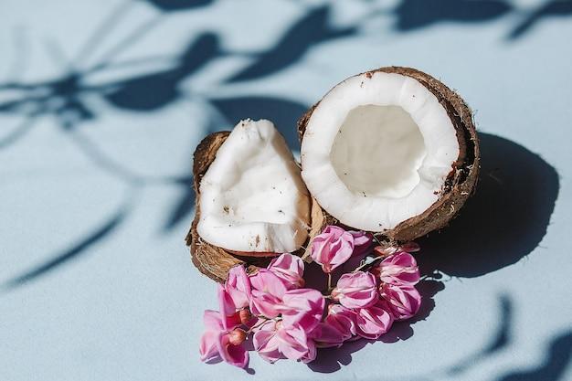 파란색 배경에 코코넛 반과 코코넛 조각