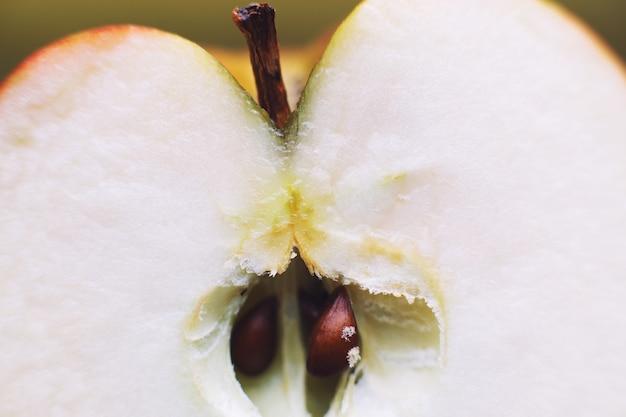 Half apple close up