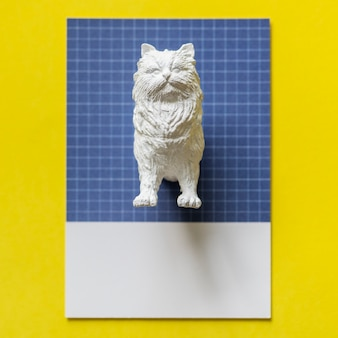 Half a cat on a colorful paper