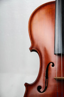 The half front side of violin