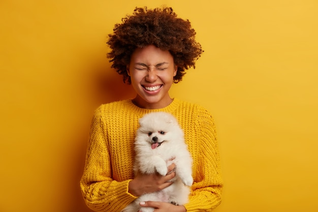Mezza lunghezza colpo di donna riccia positiva tiene affettuoso cucciolo di spitz animale domestico, indossa un maglione lavorato a maglia, pronto per la vaccinazione, ride positivamente, isolato su sfondo giallo.