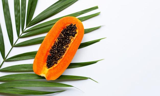 Наполовину зрелый плод папайи на зеленых листьях.