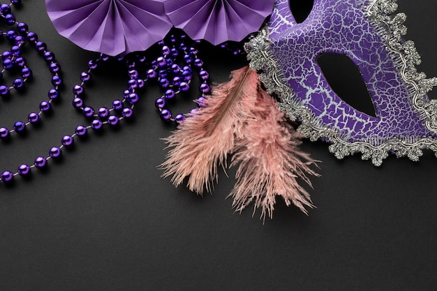 Half of victorian violet mask and feathers