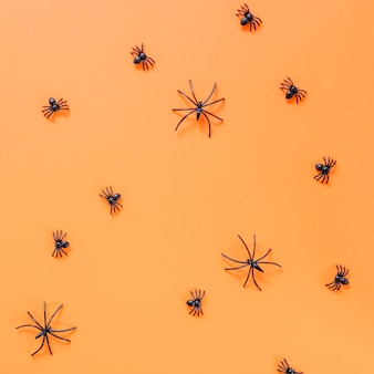 Halloween artificial spiders laid on surface