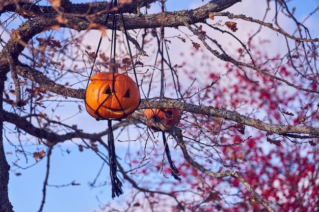 할로윈 호박 나무에 매달려 조각.
