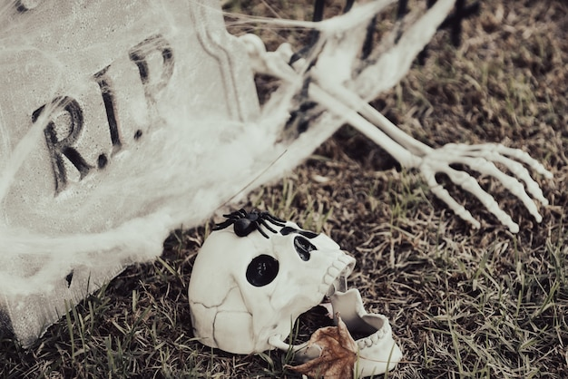 Halloween cemetery with human skull, misty background.
