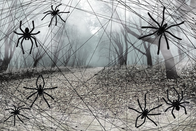 Бесцветный фон хэллоуина. черные пауки, паутина перед туманным осенним лесом. макет для дизайна открыток, плакатов, приглашений