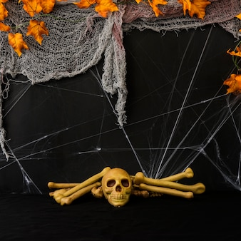 Halloween composition with skull