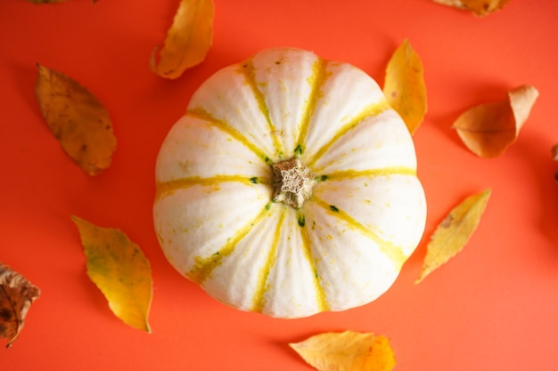 Концепция хэллоуина. осенняя композиция. тыква, сушеные листья на оранжевом фоне, вид сверху. осень.