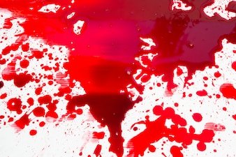 Halloween concept : Blood splatter