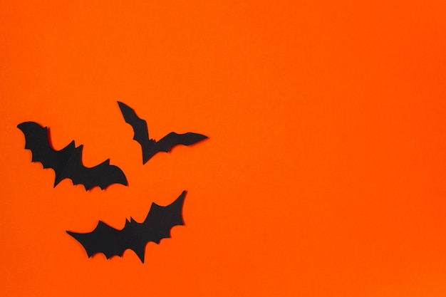 할로윈 개념입니다. 축제 장식입니다. 오렌지 배경에 박쥐입니다.