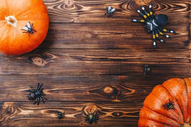 테이블에 신선한 호박과 거미 클로즈업과 할로윈 개념. 위에서 수평 보기
