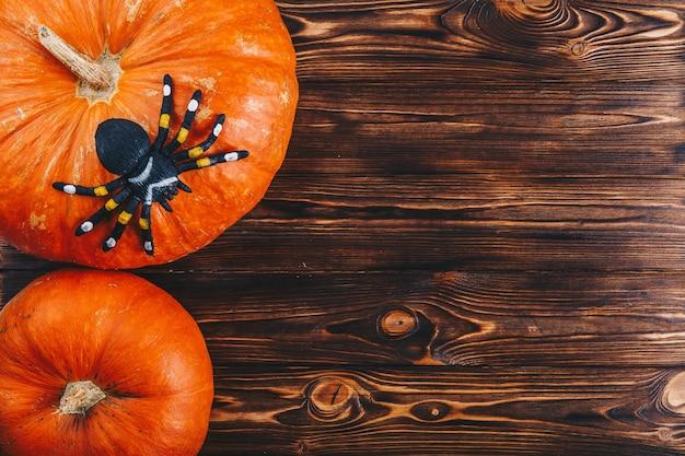 나무 테이블에 신선한 호박과 거미가 있는 할로윈 컨셉입니다. 위의 트릭 오어 트릿 보기