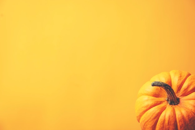 Halloween concept, yellow tone with pumpkins