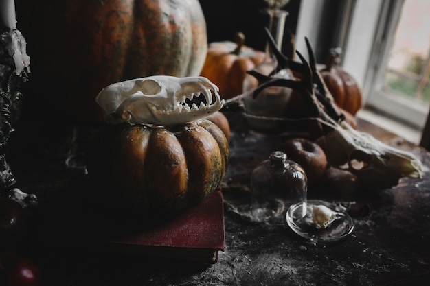 Halloween decor. old pumpkins, pomegranates, apples