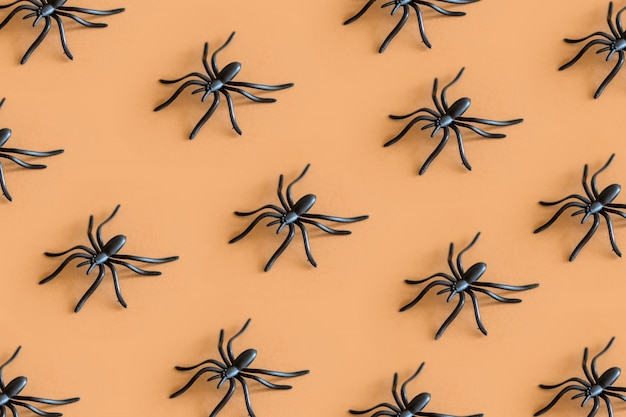 Halloween  decoration holiday concept. minimal isometric pattern of black spide