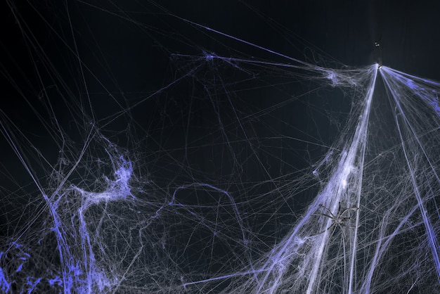 Halloween, decoration and horror concept - decoration of artificial spider web
