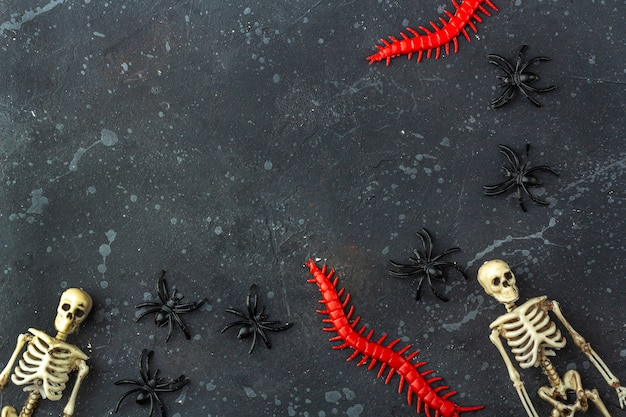 Halloween decoration: skeletons, spiders, worms on a dark bacground