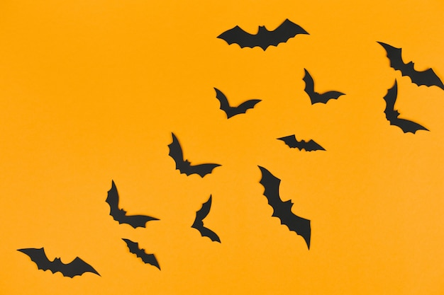 Halloween decorations concept, many black paper bats on orange wall, table top view, lots of free space