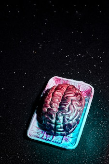 Halloween falso cervello spaventoso