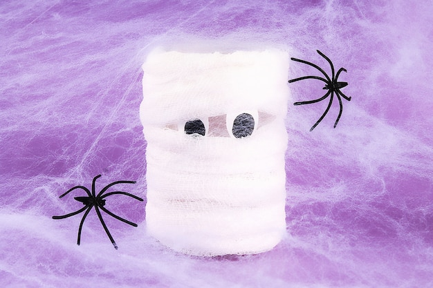 Halloween holiday  white spider web with two black spider web purple . diy mummy