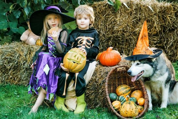 ハロウィーンの子供の休日のコンセプトです。ハッピーハロウィン、かわいい子供たちの幼児の女の子と男の子が屋外で遊ぶ。