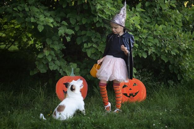 할로윈 어린 소녀는 그녀의 애완견 옆에 마녀 의상을 입고 그것을 봅니다.