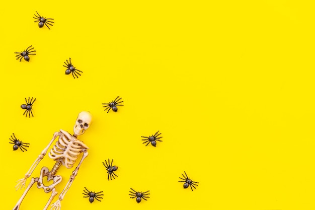 Halloween minimal decorations, composition with many black spiders and skeleton isolated on yellow background. halloween celebration trick or treat concept. flat lay top view copy space.