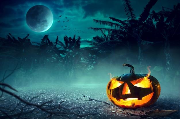 Halloween night concept