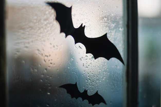 Halloween paper bats on window
