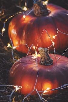 Хэллоуин ночь фон с оранжевыми тыквами и огнями, вертикальный выстрел